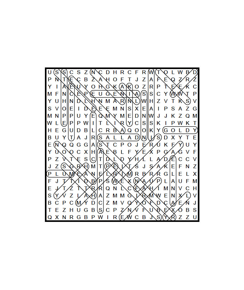 puzzle25Answer